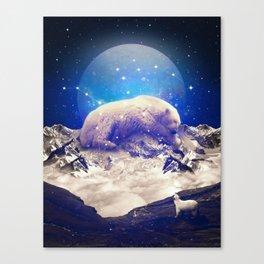 Under the Stars | Ursa Major II Canvas Print