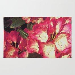 Rosy manna Rug