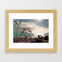 Lake Pukaki (5) Framed Art Print