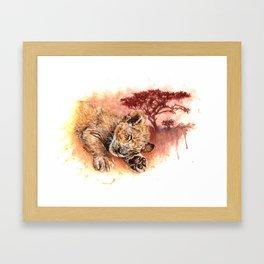 Sweet Dreams - Baby Lion Cub Framed Art Print