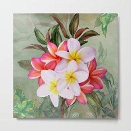 Hawaiian Plumeria Beauty Metal Print