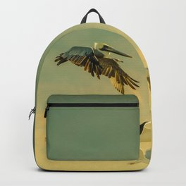 Flight Pattern Backpack