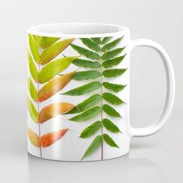 Rainbow Sumac for Autumn in Canada Coffee Mug