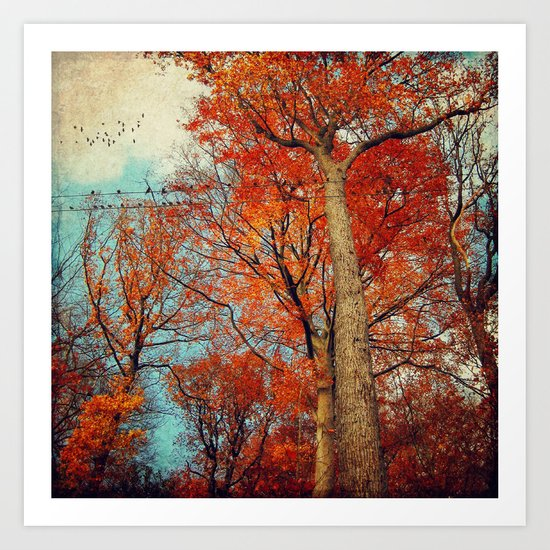 trees in autumn Art Print