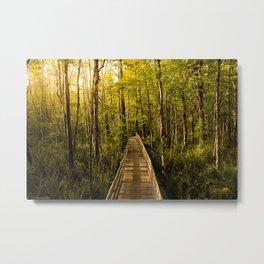 Boardwalk Through the Swamp Metal Print