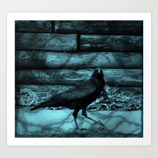 Blue Crow Shadows Art Print
