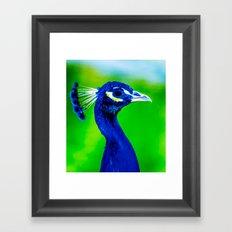 Peacock V Framed Art Print