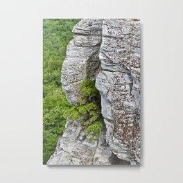 Stone Snuggles Metal Print
