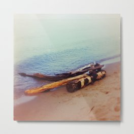 Driftwood at Lake Superior Metal Print