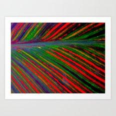 Tropicanna Art Print