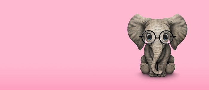 Cute Baby Elephant Calf with Reading Glasses on Pink Coffee Mug