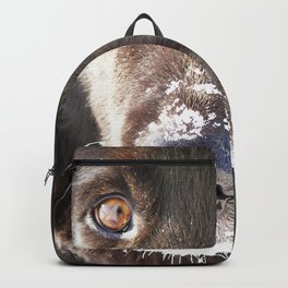 Gaze into my eyes Backpack