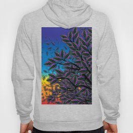 Dusk in The Forest of Glass Hoody