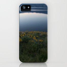 Okanagan Sunflower iPhone Case