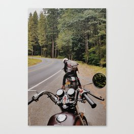 Travels with Chris Canvas Print