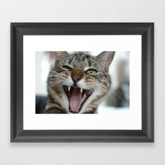 Meow Cat Framed Art Print