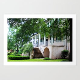 Stewart Parker House Back Art Print
