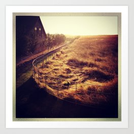 Golden grasses in the Cotwolds Art Print