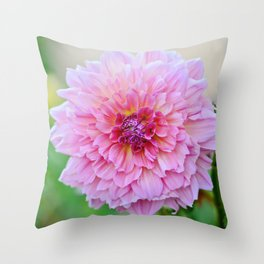 Dahlia Decadence Throw Pillow