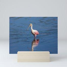 Roseate Spoonbill at Ding V Mini Art Print