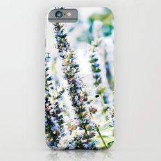 Fields of Blue iPhone 6s Slim Case