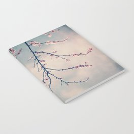 blossoms Notebook