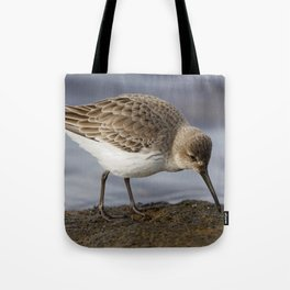 Dunlin Shorebird Tote Bag