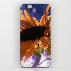 FLOWER 039 iPhone & iPod Skin