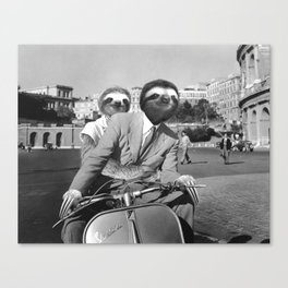 Sloth in Roman Holiday Canvas Print