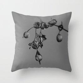Exmoor IV Throw Pillow