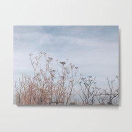 BLUE MOON IV / Alviso, CA Metal Print