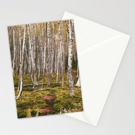 Regrowth from Mount Saint Helen Stationery Cards
