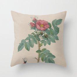 Rosa Kamtschatica Throw Pillow