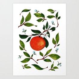 Citrus orange pretty watercolor artwork Art Print