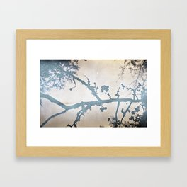 branch with berries 35mm film silver-print Framed Art Print