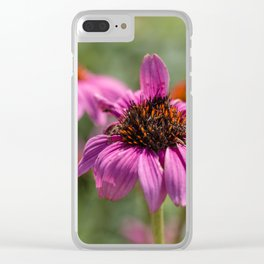 Pink Rudbeckia flower in summer garden Clear iPhone Case