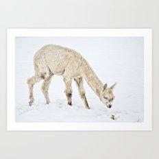 Hello...... Are you cold? Art Print