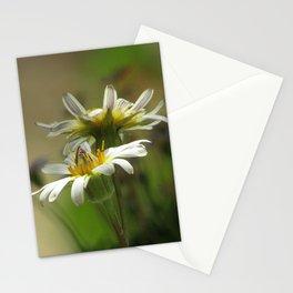 Salsify Stationery Cards
