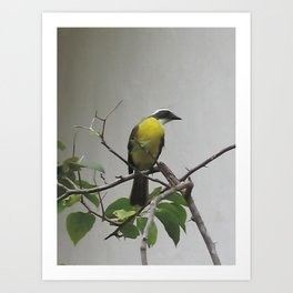 Chichen Itza Bird Art Print