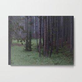 Foreign Landscape Metal Print