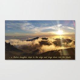 Haleakala   Pamala Ballingham Canvas Print