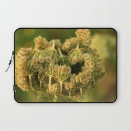 Queen Anne's Lace Flower About to Bloom Laptop Sleeve