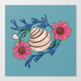 Pawleys Island Shell Canvas Print
