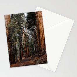 Walking Sequoia 2 Stationery Cards