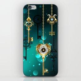 Antique Keys on Green Background ( Steampunk ) iPhone Skin