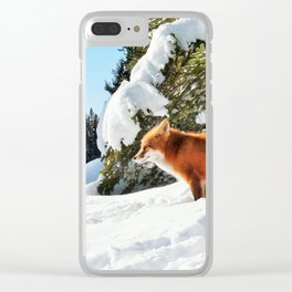 Happy Red Fox in Fresh Snow in Algonquin Clear iPhone Case