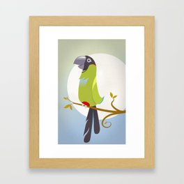 Nanday Conure Framed Art Print