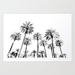 Tropical Darkroom #134 Art Print