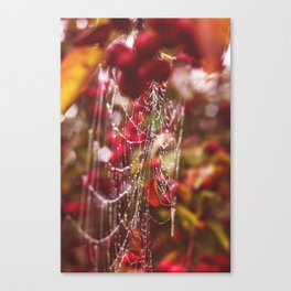 Dew Drops, Spider Webs and Apples, Oh my! Canvas Print