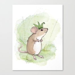 A Little Mouse Prince Named Reed Canvas Print